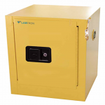 15 L Flammable Storage Cabinet LFSC-D10